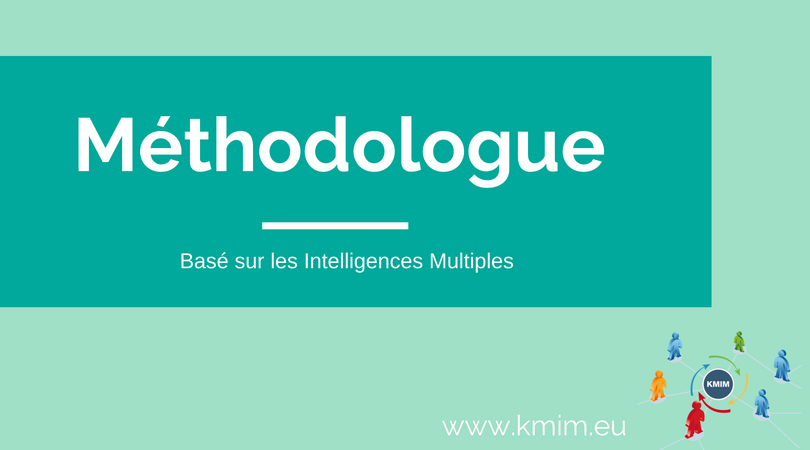 Méthodologue